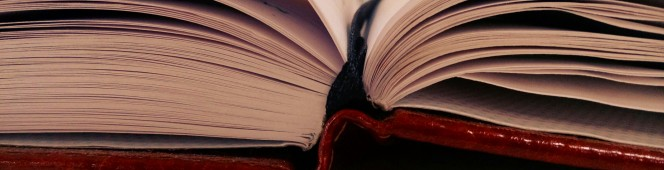 What's the Difference Between Book Blurb andSynopsis?